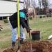 Newell_Elem_Tree_Planting_2019  (77)