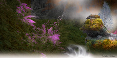 Forêt imaginaire (Didier HEROUX) Tags: photoshop cc photomontage manipulation composition paint painting montage forêt forest création nature flickr annecy photomanipulation forestier didierheroux herouxdidier imaginaire alpes hautesavoie france french