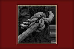 """""""Le Noeud"""" (roger gabriel simon) Tags: corde noeud blackandwhite noiretblanc schwarzundweiss bnw bw art artwork rope canon canonpowershotg5x fineartphotography photography design abstract abstrait node"""
