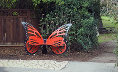 Butterfly Bench (LeftCoastKenny) Tags: coyotehillsregionalpark alamedacreektrail butterfly bench fence pavement trees brush grass trail