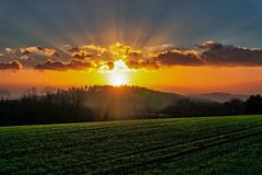 Sonnenuntergang über dem Herzenberg (juvhadamar) Tags: hadamar sundown sonnenuntergang herzenberg westerwald hessen limburgweilburg orange yellow sky wolken abendhimmel sony