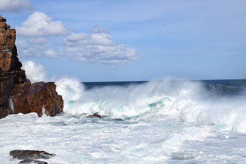 Cape of Good Hope waves