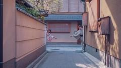 199404-190408 west japan (梁若嘉) Tags: 着物 sakura japan 和服 宮川町 祇園 京都 關西 日本