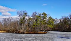 Rensselaer Lake island (dr.tspencer) Tags: tamron16300mm rensselaerlake albanypinebush albanycounty albanypinebushpreserve landscape winter