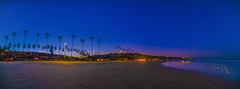 La Jolla Beach Panorama (HansenPrime) Tags: landscape water nature sunrise beach ocean palm palmtree trees shore horizon waves sand panorama panoramic sky lights glow longexposure pacific lajolla sandiego