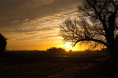 Sunrise at Stangrove Hall (shanahands2) Tags: sunrise wall fields trees sky suffolk nikon d750 fx