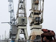Brüder (Peter Glaab) Tags: 45mm grafisch hafen hamburg hansahafen industriedenkmal kräne leitern linien nebel olympus schiffe stahl veddel zuiko harbor cranes rost