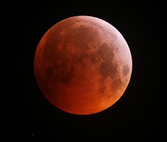 Blood Moon (sjb_astro) Tags: moon totallunareclipse lunareclipse lunar stokesley northyorkshire 600d nexstar6se astrophotography astronomy space bloodmoon eclipse