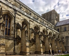 Flying buttresses along the south wall of Winchester Cathedral (photo by Rakshita Patel)