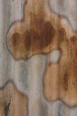 Corrugated Iron 34 (steveholding8) Tags: corrugatediron rust metal abstract patina