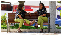 158 of 365 - Pair (Duba Feik) Tags: photoblog365 pair twin women clothes same green relaxed plaza sitting chatting park shadow repose sisters camaraderie