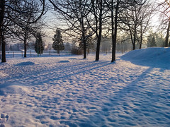 (Jelena1) Tags: snow sneg snö schnee nieve neige neve sneeuw winter zima invierno hiver vinter inverno tree trees drvo drvece arbre árbol baum träd boom albero priroda nature naturaleza natur natuur natura sky nebo ciel cielo himmel hemelgewelf serbia srbija serbie serbien servië balkans