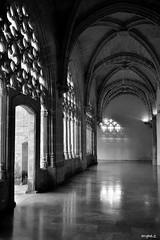 A media luz/At half light (ZAP.M) Tags: bn monocromo reflejo silueta claustro claustrosantodomingo jerez cádiz andalucía españa flickr zapm mpazdelcerro nikon nikond5300 arquitectura artegótico