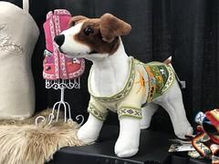 A dog wearing a sweater (f l a m i n g o) Tags: alpaca show vendor denver dog sweater