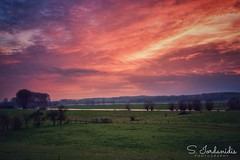 Burning Sky (Stathis Iordanidis) Tags: dramaticclouds dramaticsky walk afternoon travel silence serenity tranquility trees grass grassland countryside landscape sun sundown sunset