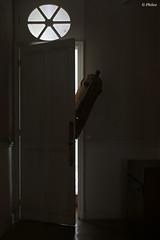 Totem et Tabou (Phileo1) Tags: châteauhipponoos chateauhipponoosurbex châteausouslesnuages chateausouslesnuagesurbex châteauabandonné verlasseneburg abandonedcastle castilloabandonado castelloabbandonato verlatenkasteel urbexphotography urbexphotographer urbexdecay urbexdecaying urbexexploring urbexwandering urbexplaces urbanphotography urbanphotographer urbandecay urbandecaying urbanexploring urbanwandering urbanart urbanexploration decay decayed decaying decayphotography decayexploring decayingplaces explore exploringphotography exploringplaces wanderingplaces forgotten forgottenphotography forgottenplaces abandonedplaces lostplaces neglected neglectedplaces lieuxoubliés derelict derelictplaces phileo phileo1 fotophileo phileourbex phileo1urbex fotophileourbex