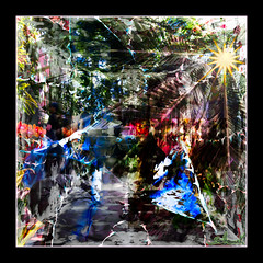 New York Botanical Gardens - Orchid Exhibit - March 2019 (GAPHIKER) Tags: composite abstract art orchids palm newyork newyorkbotanicalgardens gardens botanical nybg agave orchid exhibit happyslidersunday hss