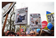 Cats against Brexit (Martyn.Hayes) Tags: brexit europeanunion eu protest politics civilunrest march protestmarch london uk england colour article50 secondreferendum 2ndreferendum peoplesvote vote banner placard funny cats cute