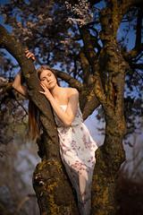 Benita (ecker) Tags: baum baumstamm bokeh donaupark frau frühling kleid natur outdoor park portrait porträt umgebungslicht wien zweige anlehnen availablelight blühen blühend branches dress female flourish naturallight nature portraiture spring springtime tree woman äste sony a7 sonya7iii ilce7m3 alpha a7iii ⍺7iii ⍺7 zeiss batis 85mm zeissbatis1885 sonnar batis1885 ƒ18 18 fotoshooting shooting austrianphotographer femalemodel beautiful beauty pretty cute model photography modelphotography hammerwalk