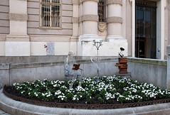 Arte alla Bibblioteca Nazionale (fabrizio_buoso) Tags: torino turin piemonte lacittàmetropolitanaditorinovistadavoi