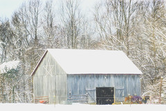 First Southern MD Snow of 2019 (crziebird) Tags: snow winter barn star 2019 horses maryland md southernmaryland