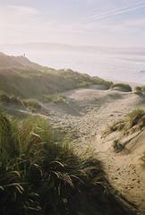 R1-01446-0014 (Jelena Ura Vereško) Tags: analogue analogphotography analoguephotography film 35mm yashicafx103 yashica sea sand dunes landscape spain salinas