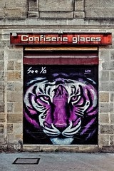 Eye of a tiger (Isa-belle33) Tags: architecture urban urbain city ville storefront shop boutique magasin fujifilm bordeaux tiger tigre animal street streetphotography streetart streetartbordeaux