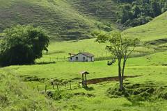 Rocinha mineira (Márcia Valle) Tags: roça verde green juizdefora minasgerais brazil brasil zonarural rurallandscape paisagemrural márciavalle nikon d5100 verão summertime tropicallandscape rocinha casa house