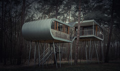 they came from outer space (Dafne Op't Eijnde) Tags: architecture nature tree treehouse belgium nikon d7100 hechtel pijnven limburg