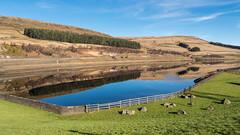 Woodhead Reservoir (Maria-H) Tags: woodhead reservoir peakdistrict derbyshire highpeak uk reflection hills olympus omdem1markii panasonic 1235