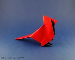 Cardinal (mancinerie) Tags: origami paperfolding papiroflexia papierfalten francescomancini mancinerie cardinal paper carta cartapiegata origamicardinal