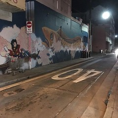 Light and shadow play on lanes at night in Campsie, Sydney - #lightandshadowplayonlanes #light #shadow #lane #Sydney #Campsie #urbanstreet #urbanfragments #urbanandstreet #streetphotography #night #mural #noentry #40 #shoppingtrolley Sent via @planoly #pl (TenguTech) Tags: ifttt instagram lightandshadowplayonlanes light shadow lane sydney urbanstreet urbanfragments urbanandstreet streetphotography
