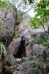 DSC_3849 (sch0705) Tags: hk hiking stream kowloonpeak kowloonpeakhinterland kowloonpeakhinterlandstream