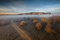 Morning roads... (Giacomo della Sera) Tags: paisaje landscape escenary escenario roads caminos paths composition naturaleza above drone aerial aerea perpesctiva perspective atmosfera mood fog