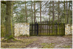 no. 1 (Aspenlaub (blattboldt)) Tags: gate fence entrance wood wooden green architecture loxia2485 loxia2485sonnar 85mm 51695547 sonnar zeiss sony carlzeiss ilce7rm3 alpha7riii manualfocus manualiris manualexposure specialthankstochristophecasenaveandhisteamfromzeissfortheirpersonalinvolvementinthedevelopmentoftheloxialensline ⚶ emount manualwhitebalance legitō nārrātō europe germany thuringia jena nature scenic threshold