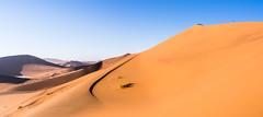 Climbing Big Mama, Namibia (loveexploring) Tags: africa bigmama namibdesert namibnaukluftnationalpark namibsandsea namibia sossusvlei curve desert dune landscape panorama person ridgeline sanddune sky