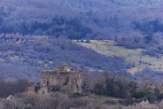 CASTELLO NEL PARCO    ----    THE CASTLE IN THE PARC (Ezio Donati is ) Tags: rovine ruines castello castle storia history panorama landscape foresta forest parco parc italia lazio canalemonterano parcodimonterano montagnedellatolfa