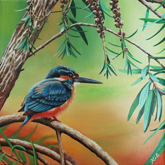 Martin Pêcheur / King Fisher (Kalisan12) Tags: animalpainting peintureacrylique martinpêcheur kingfisher kalipeinture peintureanimalière peintureoiseau acrylicpainting