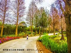 菁芳園 彰化田尾 景觀餐廳 52 (slan0218) Tags: 菁芳園 彰化田尾 景觀餐廳 52