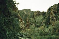 The Grand Canyon (M.Olen) Tags: grandcanyon grandcanyonnationalpark arizona az lomoxpro xpro xpro200 leica leicam6 film filmphotography