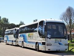 1996 Iveco 380.12.38 EuroClass HD (Alessio3373) Tags: autobus coach pullman bus iveco ivecoeuroclass ivecoeuroclasshd iveco380 iveco3801238hd ncc noleggiodarimessa