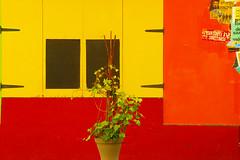 L'antidote à la sinistrose (Edgard.V) Tags: paris parigi couleurs cores colors colori fenêtre windows ventanas janelas finestra jaune yellow amarelo giallo rosso giallorosso rouge red vermelho