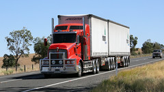 Newell @ Parkes (2/6) (Jungle Jack Movements (ferroequinologist)) Tags: k200 don watson kenworth freightliner western star quicks armestos beerwah wattle flat ipec toll hp horsepower big rig haul haulage freight cabover trucker drive transport carry delivery bulk lorry hgv wagon road highway nose semi trailer deliver cargo interstate articulated vehicle load freighter ship move roll motor engine power teamster truck tractor prime mover diesel injected driver cab cabin loud rumble beast wheel exhaust double b grunt newell parkes