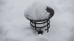 One buried garden lantern. (kuntheaprum) Tags: stormpetra snow backyard sony a7riii tamron 70300mm sledding