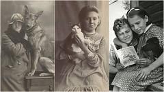 รวมภาพหายากของแมวและสุนัขที่เต็มไปด้วยความอบอุ่น (Youlike.WTF) Tags: ความอบอุ่น ภาพหายาก สุนัข แมว