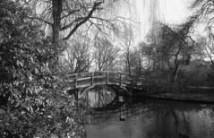 Broerse park Alida Bosshardt bridge (Arne Kuilman) Tags: amsterdam nikon fm3a 28mm luckyshd iso100 id11 7minutes homedeveloped stock analogue film broersepark alidabosshardt majoorbosshardt brug bridge