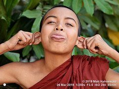 2016-12b World's Future 2019 (01b) (Matt Hahnewald) Tags: matthahnewaldphotography facingtheworld head face eyes mouth tongue expression story shorn shorthair robe maroon bodylanguage funny bothhands fun lifestyle upbringing childhood buddhist buddhism buddhistmonk maroonrobe monastery monk boymonk loikow kayahstate myanmar burma asia asian myanmarese male boy portraiture nikond610 nikkorafs85mmf18g 85mm resized 1200x900pixels horizontal street portrait halflength fullfaceview outdoor colour posing stickingouttongue pullingonears makinggrimaces dusk clarity person happyplanet pullingfaces conceptual humour 4x3ratio cultural traditional closeup consensual lookingatcamera shaved