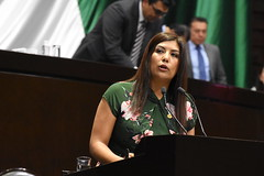 Carmen Julia Prudencio (DipCiudadanoMx) Tags: movimiento ciudadano diputadosciudadanos