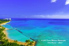 OAHU-HAWAII_1D50589 (Donna Molinari Photography) Tags: sanjose ca usa