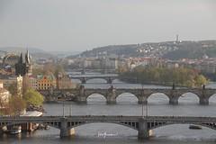 nEO_IMG_DSC05126 (NofaceAmii) Tags: 捷克 布拉格 ck鎮